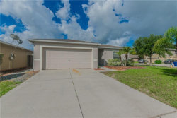 Photo of 13902 Noble Park Drive, ODESSA, FL 33556 (MLS # U8007918)