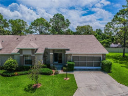Photo of 2300 Hidden Trail Drive, SPRING HILL, FL 34606 (MLS # U8010741)