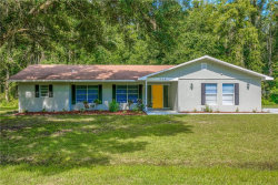 Photo of 346 Ranch Road, TARPON SPRINGS, FL 34688 (MLS # U8010950)