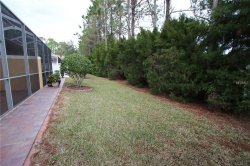 Photo of 1902 Paw Paw Place, TRINITY, FL 34655 (MLS # U8011250)