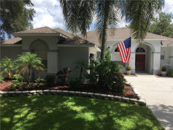 Photo of 1261 Blackrush Drive, TARPON SPRINGS, FL 34689 (MLS # U8014017)