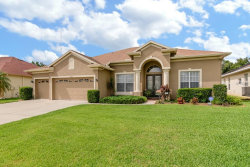 Photo of 2305 Wood Pointe Drive, HOLIDAY, FL 34691 (MLS # U8014321)