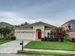 Photo of 10504 Peppergrass Court, TRINITY, FL 34655 (MLS # U8014442)