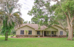 Photo of 2747 Wilsky Road, LAND O LAKES, FL 34639 (MLS # U8015184)