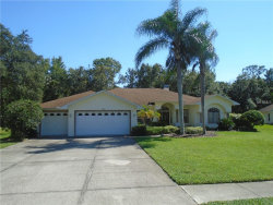 Photo of 10102 Maybrook Court, NEW PORT RICHEY, FL 34654 (MLS # U8018017)