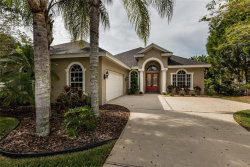 Photo of 1410 Norris Way, TARPON SPRINGS, FL 34688 (MLS # U8019999)