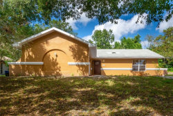 Photo of 8453 Dirlenton Way, WEEKI WACHEE, FL 34613 (MLS # U8024696)