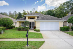 Photo of 1428 Stroud Court, TRINITY, FL 34655 (MLS # U8024988)