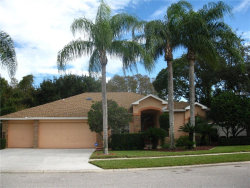 Photo of 1448 Jutland Drive, TRINITY, FL 34655 (MLS # U8025215)