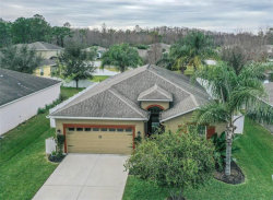 Photo of 12407 Jillian Circle, HUDSON, FL 34669 (MLS # U8030444)
