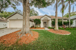Photo of 3069 Regal Oaks Boulevard, PALM HARBOR, FL 34684 (MLS # U8030471)