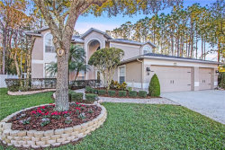 Photo of 4153 Rotherham Court, PALM HARBOR, FL 34685 (MLS # U8031056)