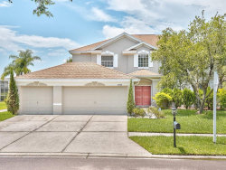 Photo of 10748 Plantation Bay Drive, TAMPA, FL 33647 (MLS # U8033609)