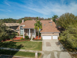 Photo of 1338 Preservation Way, OLDSMAR, FL 34677 (MLS # U8034992)