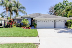 Photo of 1241 Blackrush Drive, TARPON SPRINGS, FL 34689 (MLS # U8037306)