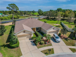 Photo of 1008 Orca Court, HOLIDAY, FL 34691 (MLS # U8037920)