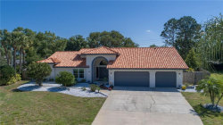 Photo of 3090 Doxberry Court, CLEARWATER, FL 33761 (MLS # U8042203)