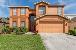 Photo of 10649 Firebrick Court, TRINITY, FL 34655 (MLS # U8044931)