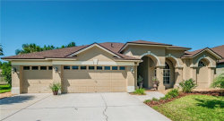Photo of 19504 French Lace Drive, LUTZ, FL 33558 (MLS # U8046445)