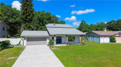 Photo of 1920 Levine Lane, CLEARWATER, FL 33760 (MLS # U8046456)