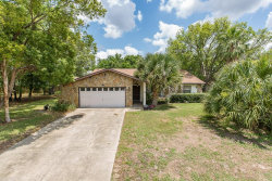 Photo of 10443 Tilburg Street, SPRING HILL, FL 34608 (MLS # U8046467)