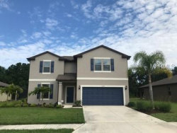 Photo of 11068 58th Street Circle E, PARRISH, FL 34219 (MLS # U8046575)