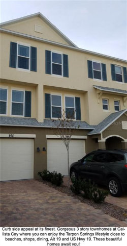 Photo of 805 Callista Cay Loop, Unit 47, TARPON SPRINGS, FL 34689 (MLS # U8047635)