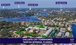 Photo of 809 Callista Cay Loop, TARPON SPRINGS, FL 34689 (MLS # U8047705)