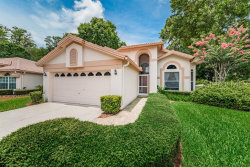 Photo of 3777 Nottingham Drive, TARPON SPRINGS, FL 34688 (MLS # U8049738)