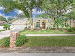 Photo of 3024 Colonial Ridge Drive, BRANDON, FL 33511 (MLS # U8050235)