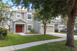 Photo of 11221 Creek Haven Dr, RIVERVIEW, FL 33569 (MLS # U8052862)