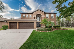 Photo of 3627 Barnweill Street, LAND O LAKES, FL 34638 (MLS # U8052967)