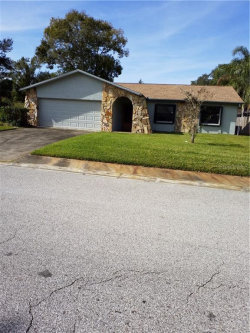 Photo of 4111 N Bay Hills Boulevard, SAFETY HARBOR, FL 34695 (MLS # U8058981)