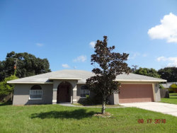 Photo of 308 45th Street Court W, PALMETTO, FL 34221 (MLS # U8059142)