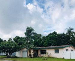 Photo of 1252 Lady Marion Lane, DUNEDIN, FL 34698 (MLS # U8061455)