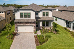 Photo of 3859 Mellon Drive, ODESSA, FL 33556 (MLS # U8062801)
