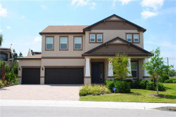 Photo of 1408 Keystone Ridge Circle, TARPON SPRINGS, FL 34688 (MLS # U8064744)