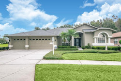 Photo of 1530 Avada Court, TRINITY, FL 34655 (MLS # U8064883)