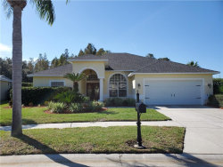 Photo of 8833 Bel Meadow Way, TRINITY, FL 34655 (MLS # U8065464)