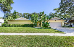 Photo of 1591 Glen Hollow Lane S, DUNEDIN, FL 34698 (MLS # U8066223)