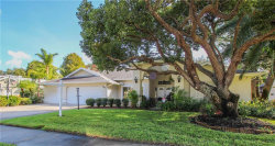 Photo of 743 Litchfield Lane, DUNEDIN, FL 34698 (MLS # U8067619)
