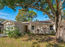 Photo of 1914 Saginaw Court, OLDSMAR, FL 34677 (MLS # U8071568)