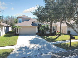 Photo of 9854 Bowden Mill Court, LAND O LAKES, FL 34638 (MLS # U8071683)
