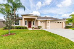 Photo of 29344 Blackwolf Run Loop, SAN ANTONIO, FL 33576 (MLS # U8075551)