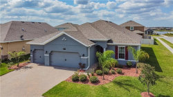Photo of 1929 Moorhen Way, LUTZ, FL 33558 (MLS # U8079586)