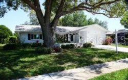 Photo of 1490 Queen Anne Boulevard, PALM HARBOR, FL 34684 (MLS # U8080029)