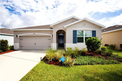 Photo of 13613 Hunting Creek Place, SPRING HILL, FL 34609 (MLS # U8088780)