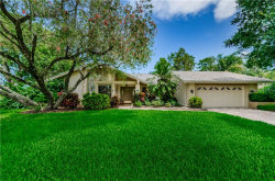 Photo of 435 Palmdale Drive, OLDSMAR, FL 34677 (MLS # U8090295)