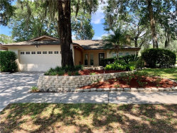 Photo of 14801 Oak Vine Drive, LUTZ, FL 33559 (MLS # U8090729)