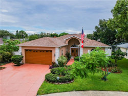 Photo of 1700 Bermuda Court, SAFETY HARBOR, FL 34695 (MLS # U8092790)